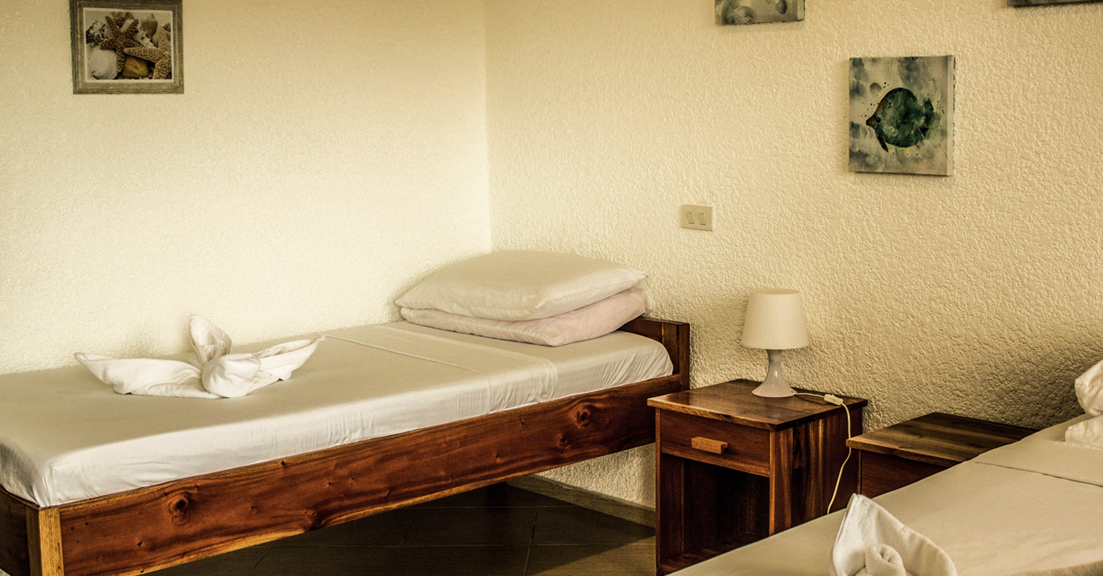 Twin Bed with balcony 2